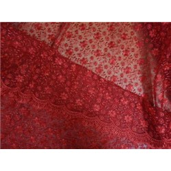 Embroidered RED net fabric